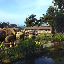 SF Zoo Free Day for San Francisco Residents