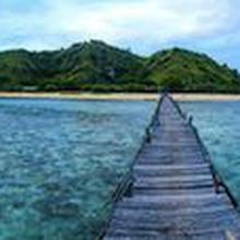 Uncovering Borneo and East Indonesia With Charlie Ryan