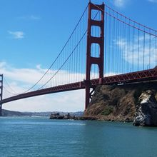 Sea Life Excursion or City Lights Cruise - San Francisco Bay
