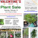Valentine's Day Plant Sale