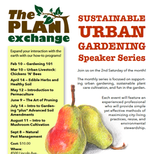 Intro to Urban Permaculture