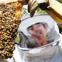 Natural Beekeeping with Top Bar & Warre Hives