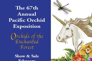 The 67th Annual Pacific Orc...