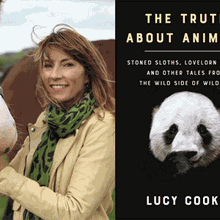 LUCY COOKE at Books Inc. Berkeley