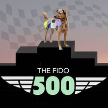 The Fido 500 Dog Race!