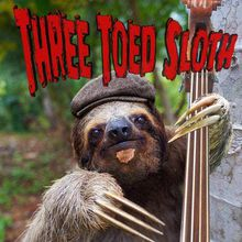LIVE MUSIC with Three Toed Sloth