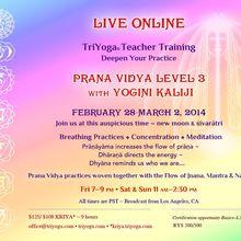 TriYoga Live Online Teacher Training Prana Vidya Level 3 with Yogini Kaliji
